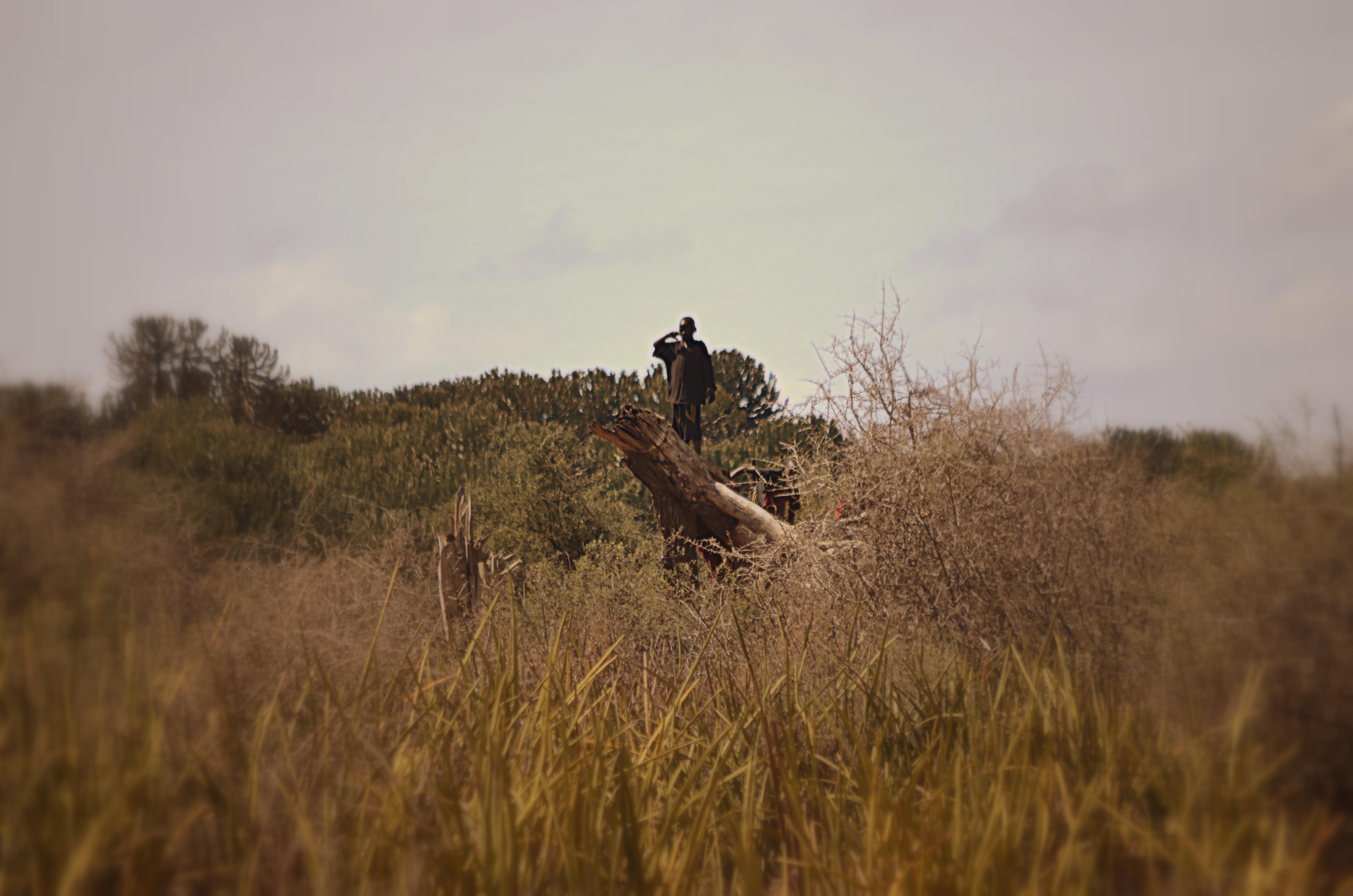 masai trekking en Tanzania