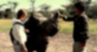 Por los rinocerontes en TVE1