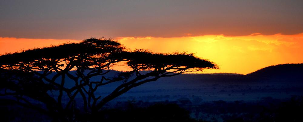 Atardecer Serengeti safari tanzania