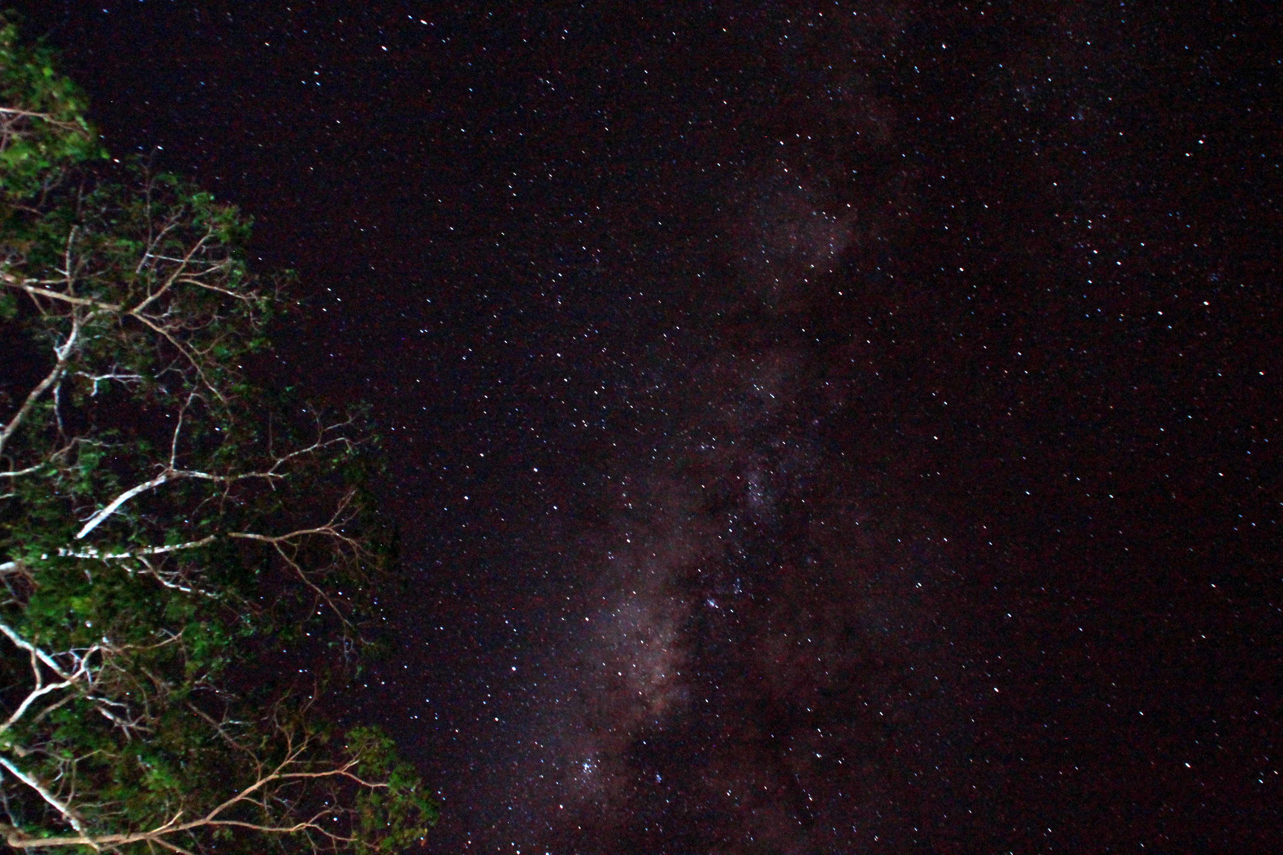 noche estrellada acampada safari