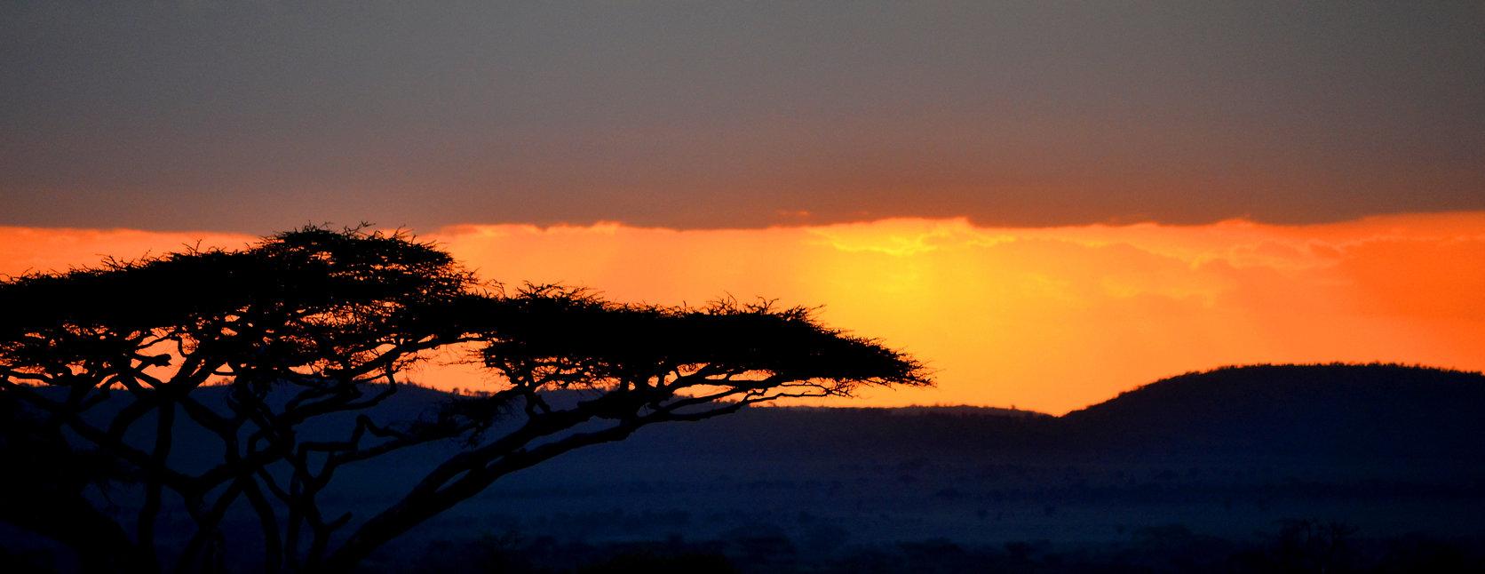 Safari en Tanzania. Viajes por Tanzania. Safaris a medida