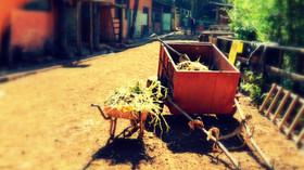 GIBB`S FARM. UNA EXPERIENCIA DE LUJO A LOS PIES DEL NGORONGORO