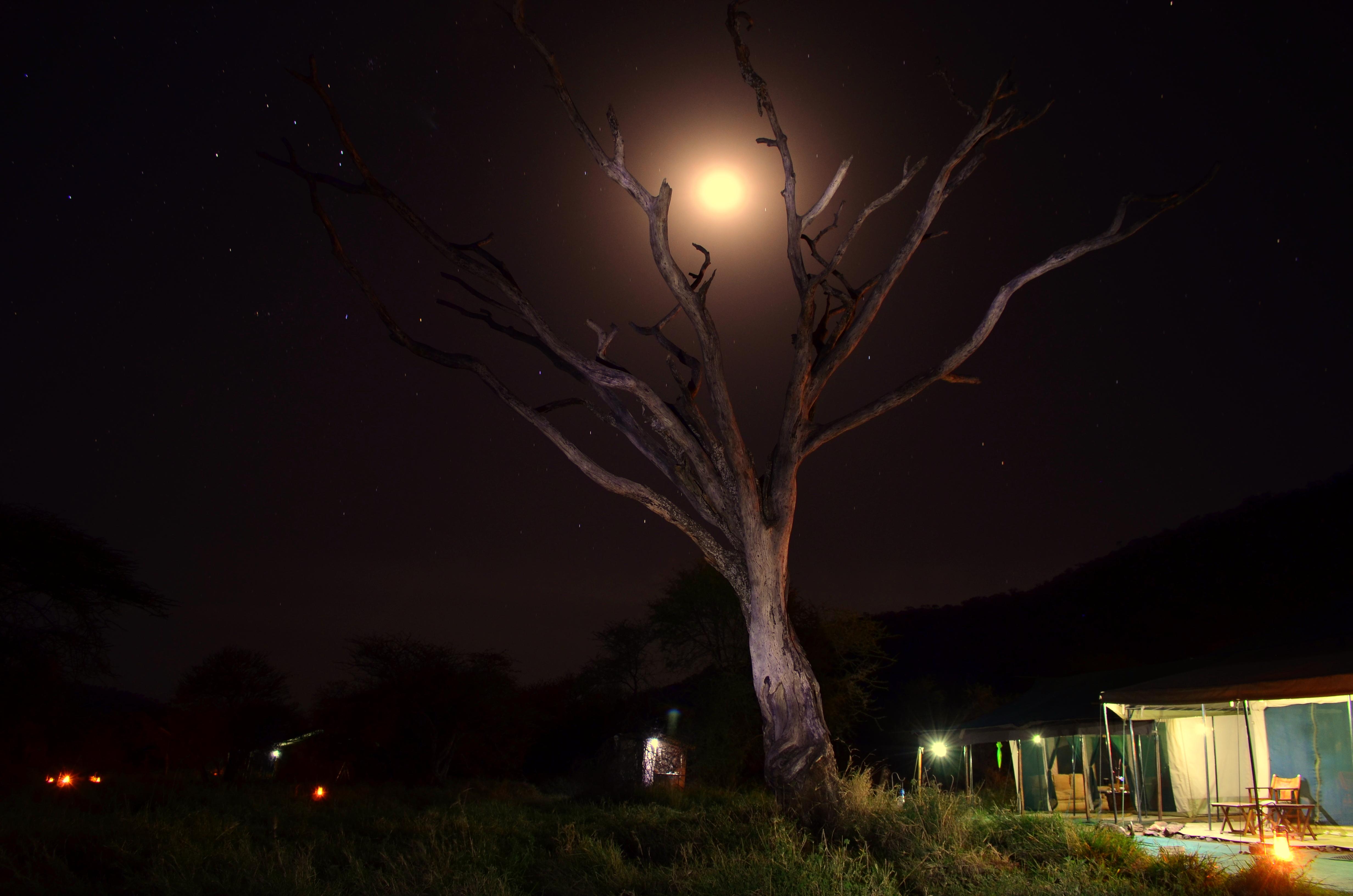 Campamento por la noche tanzania