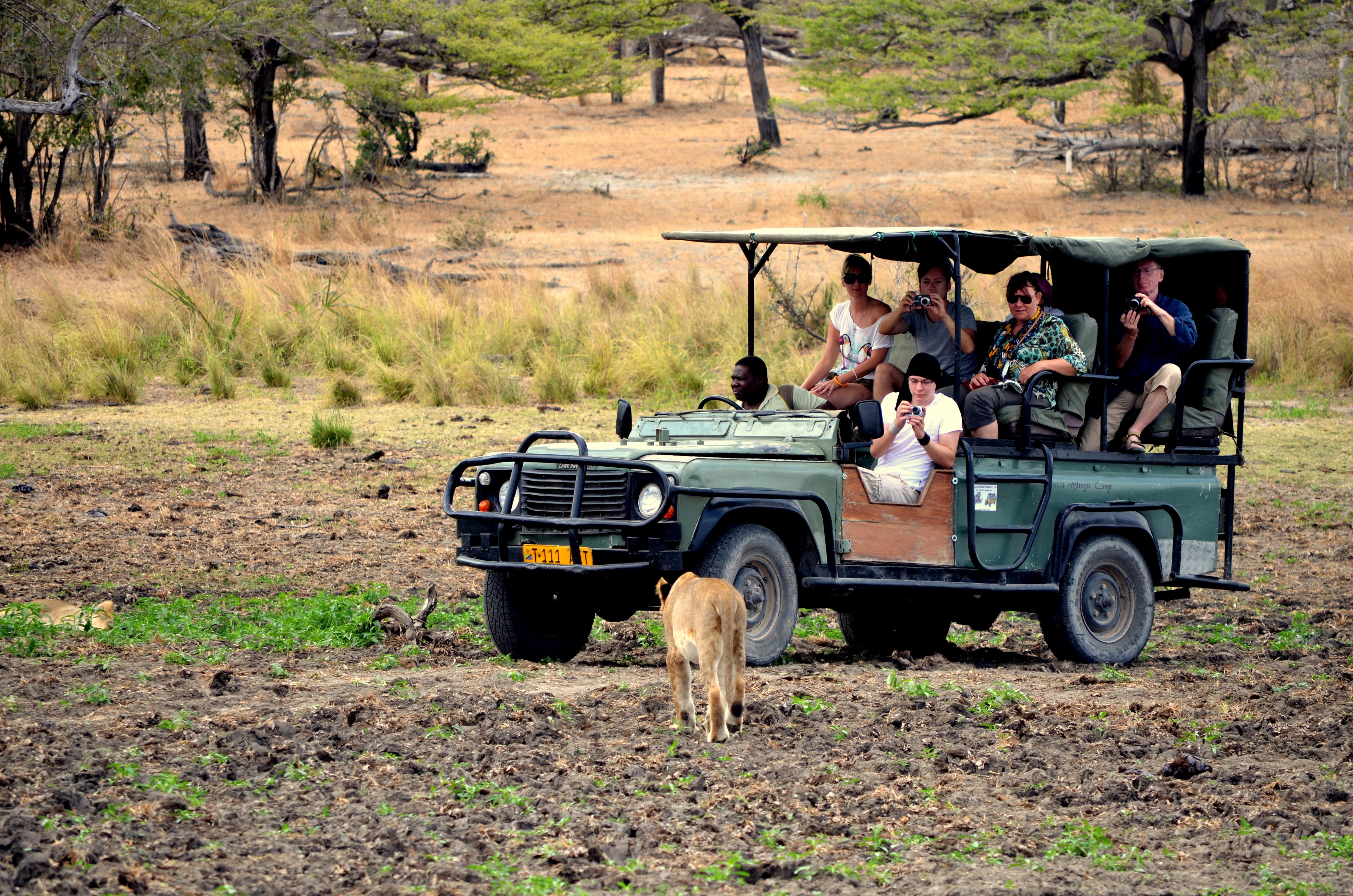 vehículo abierto de safari en Selous