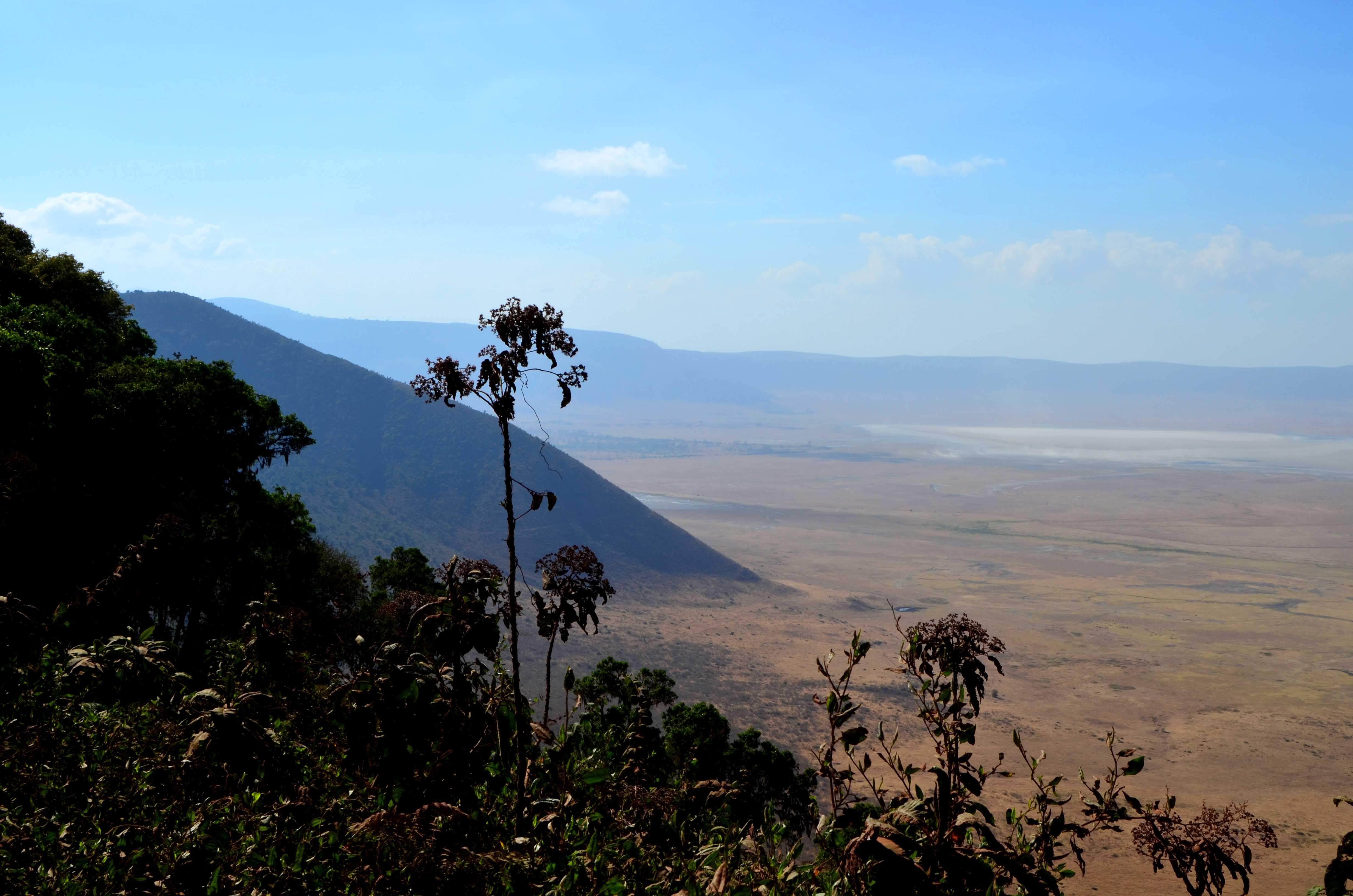 Safari Tanzania Ngorongoro cráter