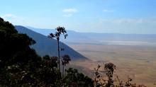 Nuevos safaris en camello!! Arusha - Ngorongoro en 5 días