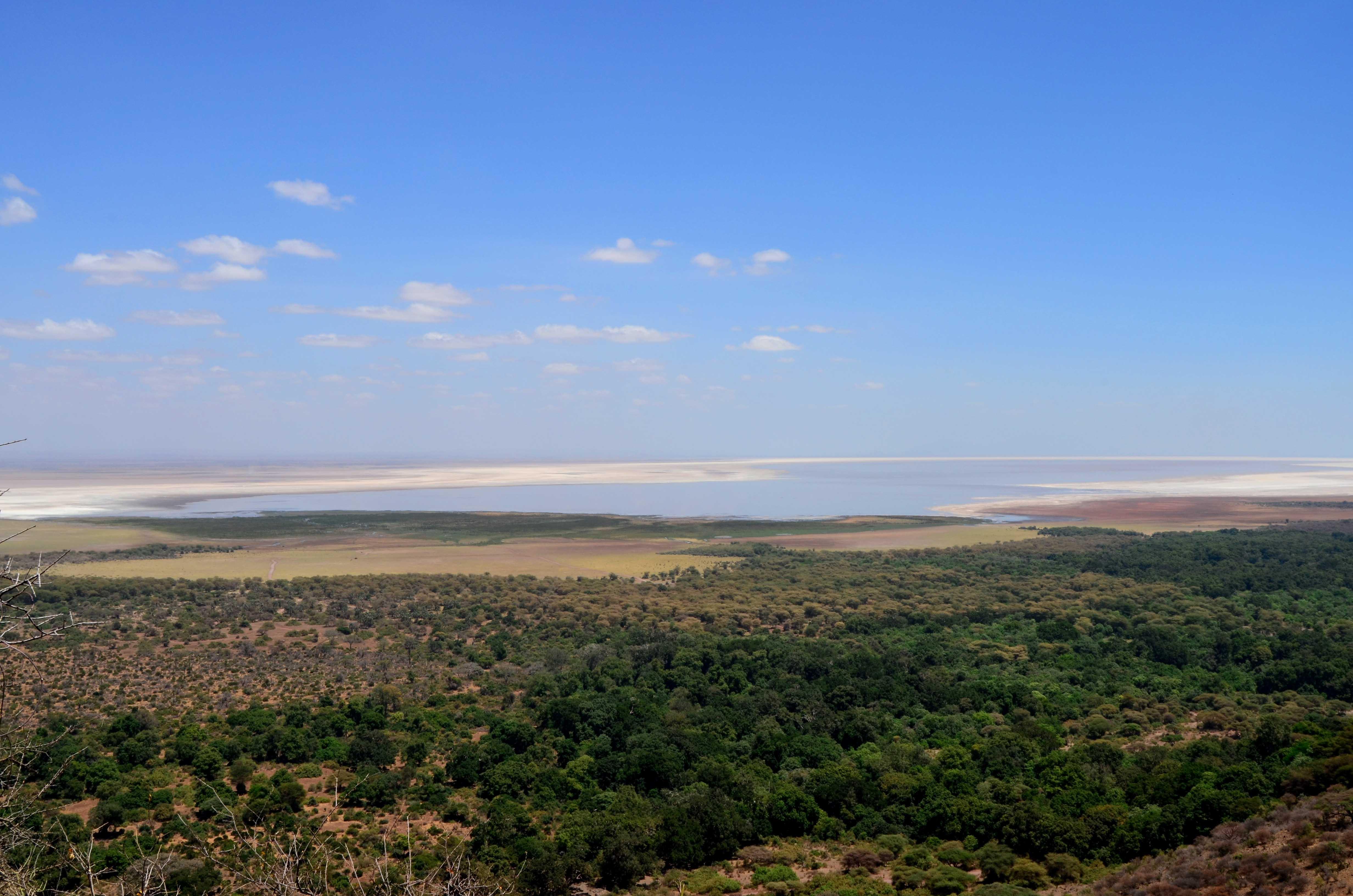 Safaris en Lago Manyara Tanzania