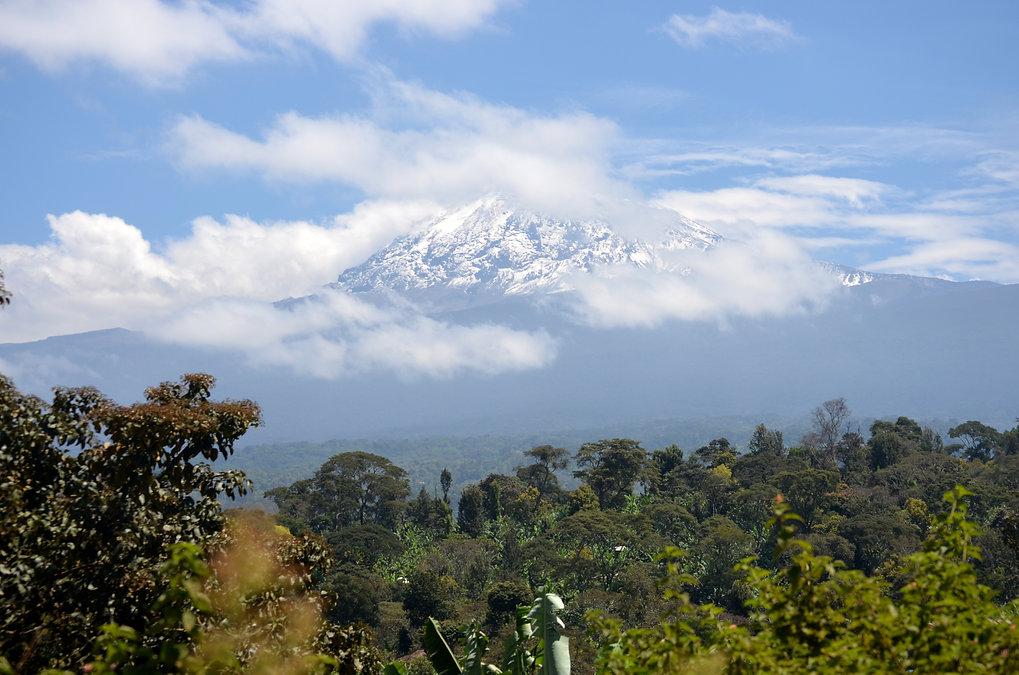 trekking en el Kilimanjaro