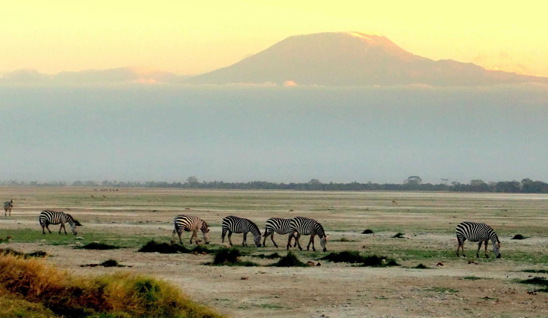 Kilimanjaro desde Amboseli