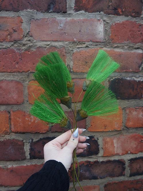 Green Ventaglio