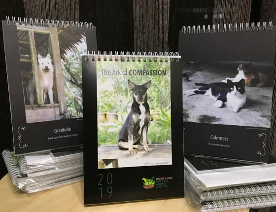 Noah's Ark 2019 Calendars Available Now!