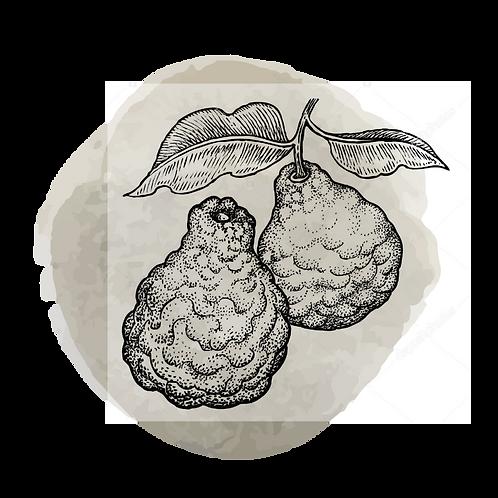 Bergamota Orgánica  (Citrus Bergamia)