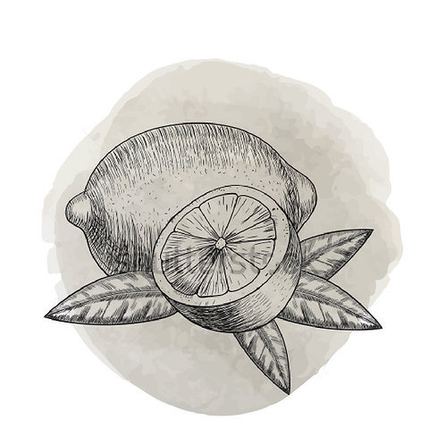 Limón  (Citrus Limonum)