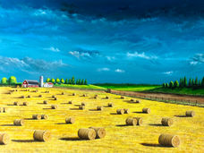 Hayscape