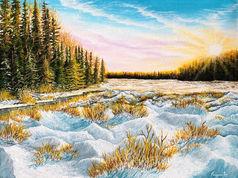 Winter radiance
