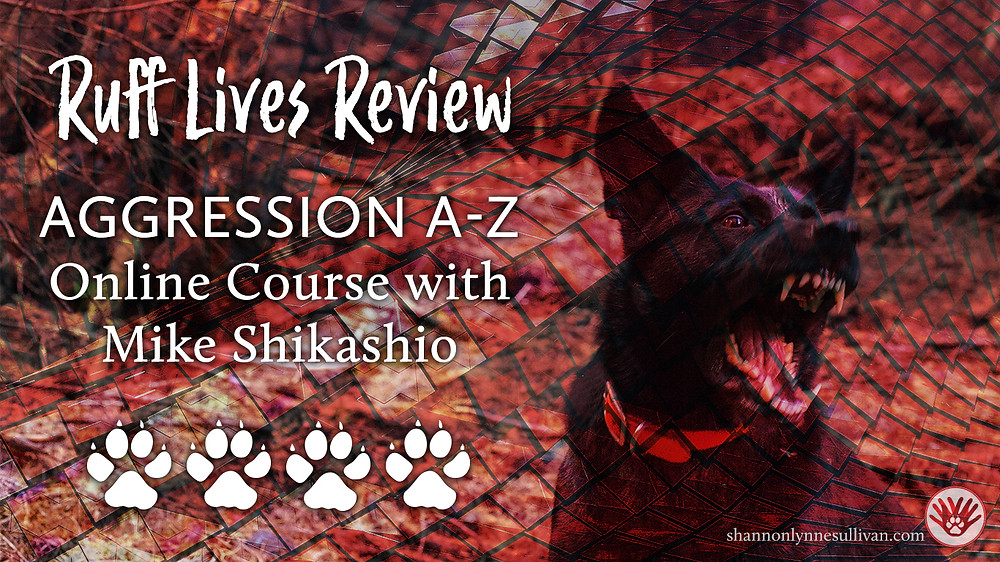 A dog with mouth open and teeth bared. Text: Ruff Lives Review Aggression A-Z Online Course with Mike Shikashio