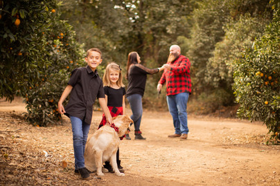 Even the dog had fun at Prospect Park in Redlands, California. We found an orange grove and this wonderful yellow tree. We also got epic photos overlooking the inland empire! It was a dream morning with my high school friend who I had not seen in 20 years.