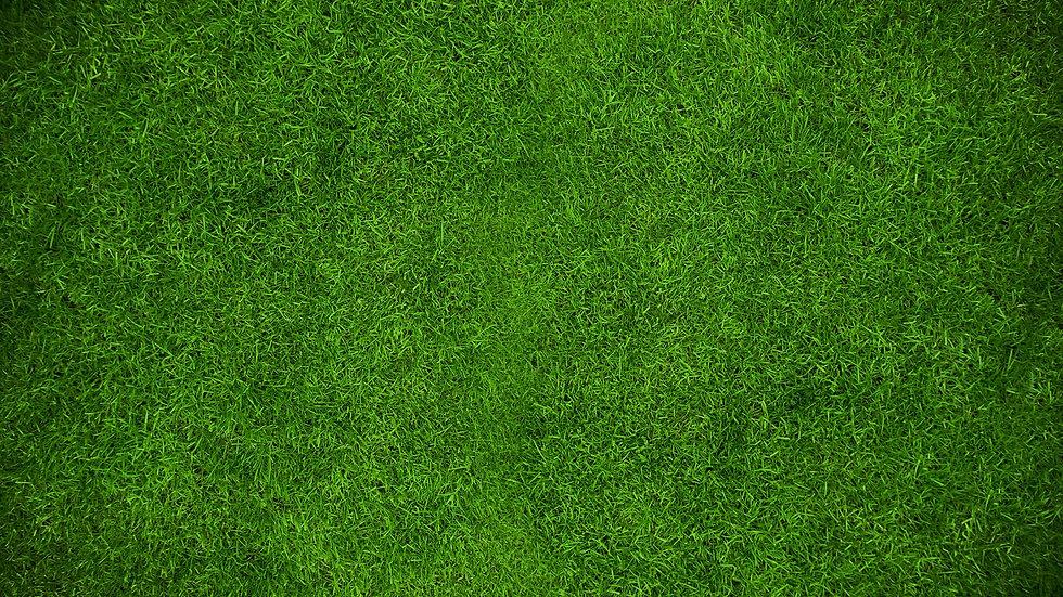 PC_SocScrn_Grass.jpg