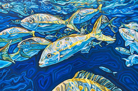 For web. - Yellowtail Snappers, 24 x 36 in, 61 x 91.44 cm, oil on wood.jpg