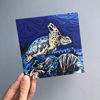 """Hawksbill Turtle, 4"""" x 4"""" postcard"""