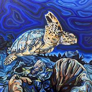 For web. - Hawksbill Turtle, oil on wood