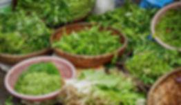herbs-2464828_1920.jpg