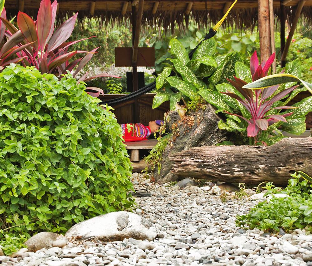 Yoga class in the garden at otra ola