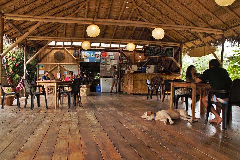 spanish class in organic cafe