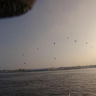 Fisketur_2010_107.JPG