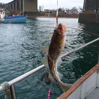 Fisketur 2012 (22).JPG