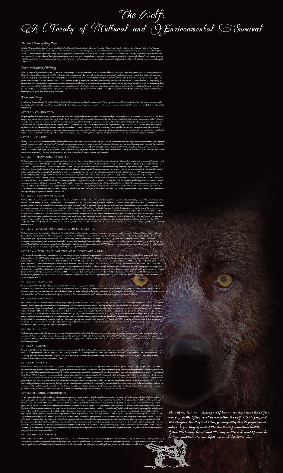 The Wolf - A Treaty of Cultural and Envi