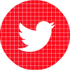 twitter red check circle social media icon.png