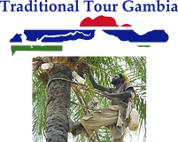 Gambia Logo with Palm Wine Large image