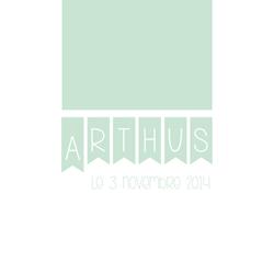faire-parts arthus recto 1