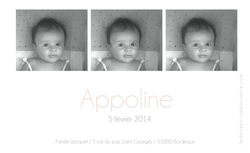 Appoline rectangulaire verso 1 rose.png
