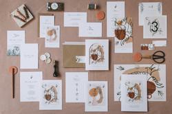 Collection mariage Mariette et Pierre - oiseaux et craie grasse