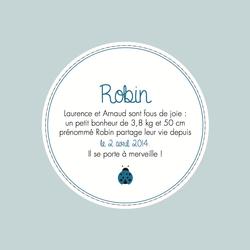 Robin recto carré 2