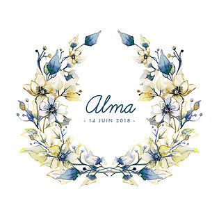 FP Alma BAT moins jaune 11, 5.jpg