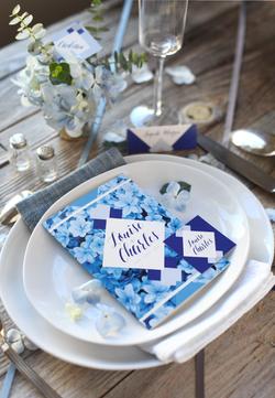 louise et charles playdate hortensia bleu menu biais.png