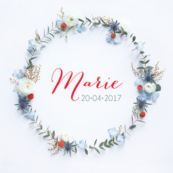 nouvelle collection naissance 20176.jpg