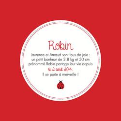 Robin recto carré 1