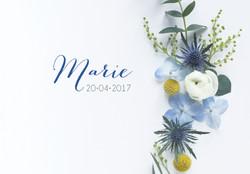 Fp marie 105-150.jpg