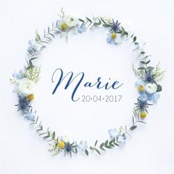 nouvelle collection naissance marie 13,5-13,5 couronne 20179.jpg