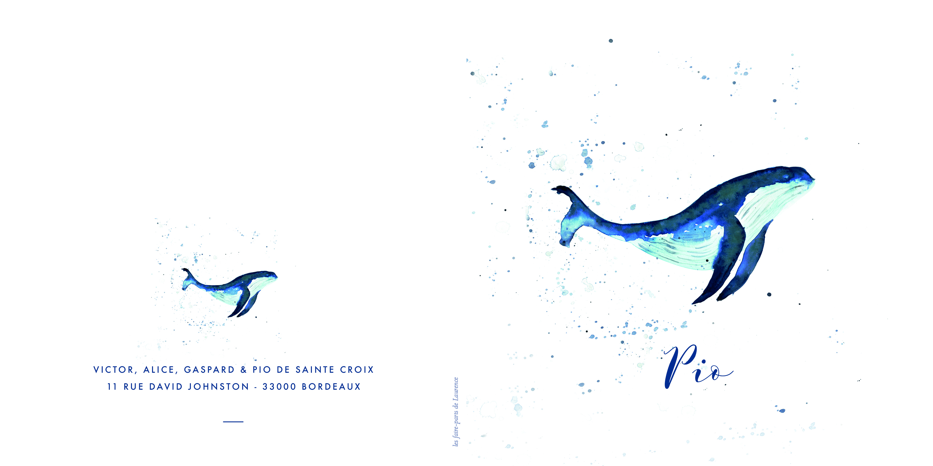 Faire-Part Pio - baleine aquarelle- livr