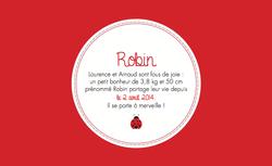 Robin recto rectangulaire 1