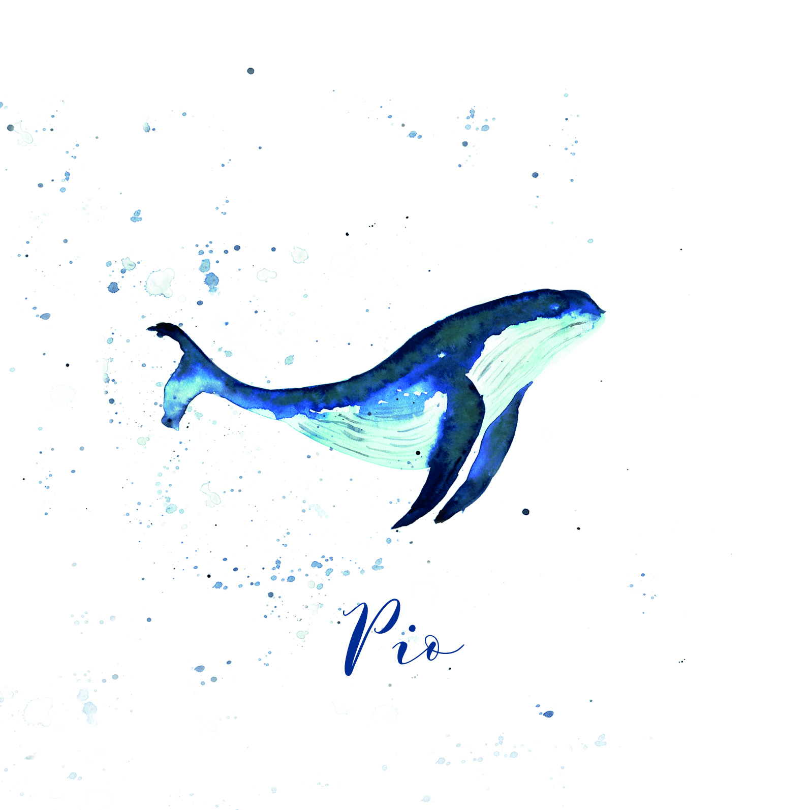 Faire-Part Pio - baleine aquarelle- feui