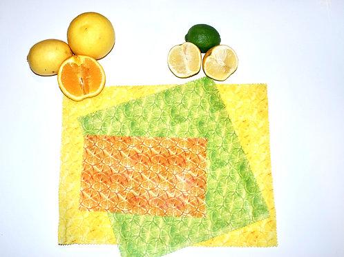 Citrus Slices Combo - Set of 3 (s, m, l)