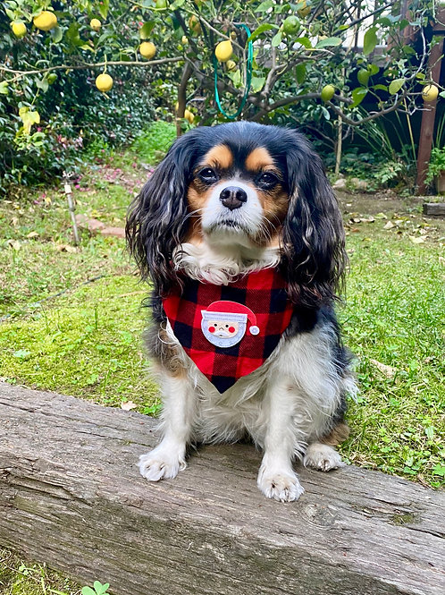 Santa's Helper dog bandana