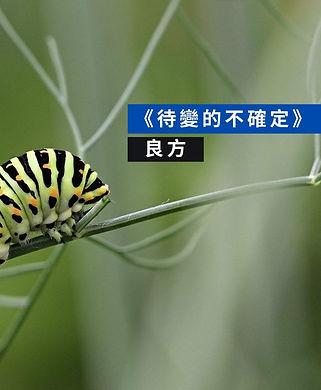 良方_待變的不確定.jpg