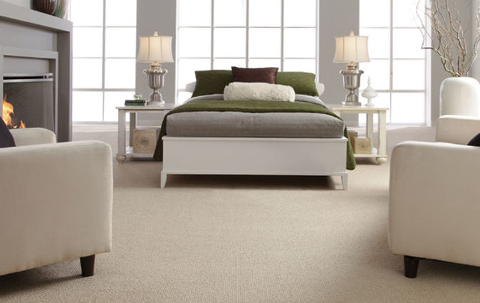 Carpet Cleaners in Shropshire